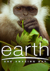 Search netflix Earth: One Amazing Day